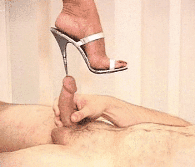 mistress steps on submissive penis